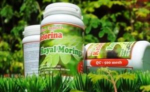Royal Moringa 2